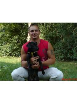 Kutyarandi: megoldás magányos kutyásoknak