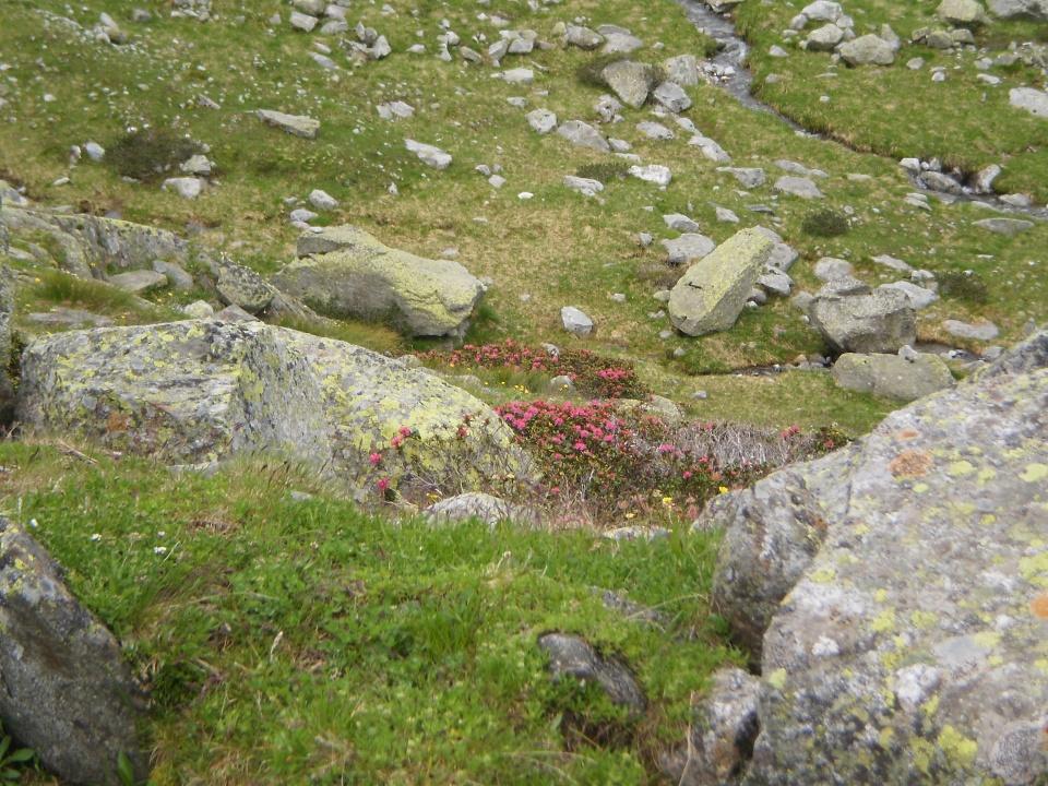 boulder társkereső csatlakozási oldal uk
